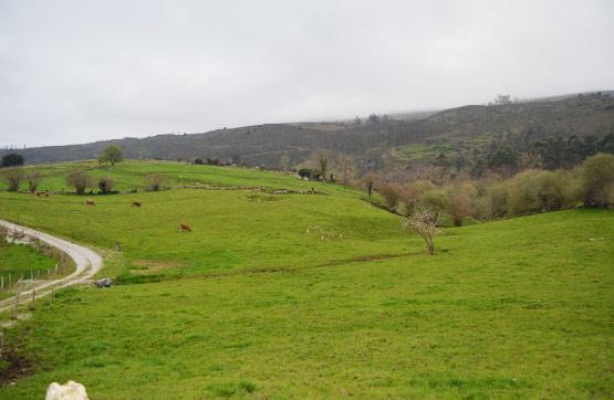 Suelo en venta en Nava, Asturias, Lugar Centro El Bosque, 14.300 €, 896 m2