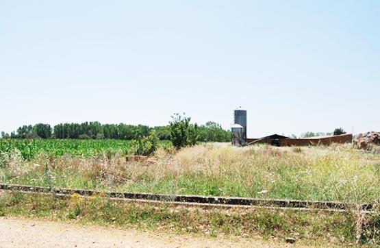 Suelo en venta en Farballes, Valdevimbre, León, Paraje El Camino, 87.400 €, 698 m2