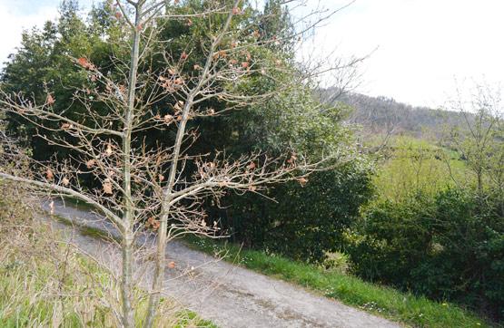 Suelo en venta en Suelo en Villaviciosa, Asturias, 12.460 €, 678 m2