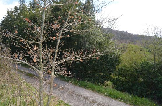Suelo en venta en Suelo en Villaviciosa, Asturias, 22.300 €, 2396 m2