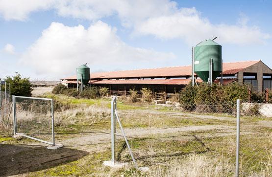 Industrial en venta en Brieva, Segovia, Paraje Cerro del Lomo, 87.975 €, 1045 m2