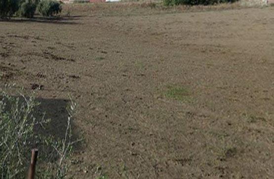 Suelo en venta en Suelo en Villanueva del Río Y Minas, Sevilla, 82.100 €, 7706 m2