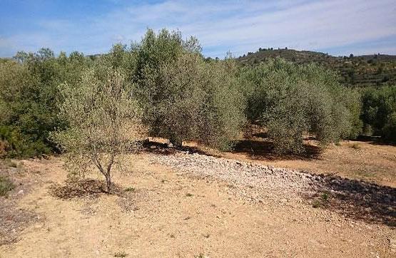 Suelo en venta en La Coloma, Vilanova D`alcolea, Castellón, Lugar Paraje Mas D`esenyor, 3.100 €, 2993 m2