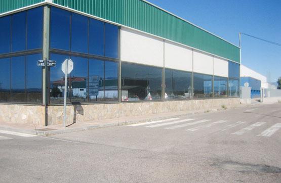 Industrial en venta en Casatejada, Cáceres, Calle Cuatro Caminos, 106.500 €, 450 m2