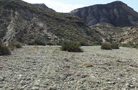Suelo en venta en Rioja, Gádor, Almería, Calle Paraje Rambla Seca Pol 24 Parc 10, 5.000 €, 3197 m2