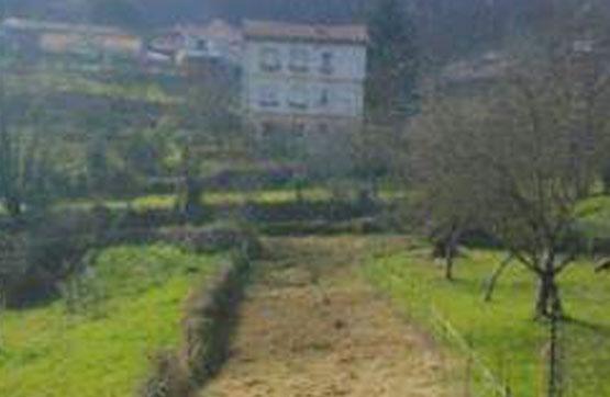 Suelo en venta en Suelo en Grado, Asturias, 9.200 €, 659 m2