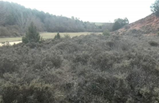 Suelo en venta en Hinojosa del Campo, Soria, Paraje El Berral, 2.700 €, 8800 m2