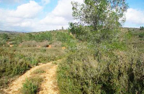 Suelo en venta en La Barona, Vall D`alba, Castellón, Lugar Partida Bornell, 7.300 €, 10750 m2