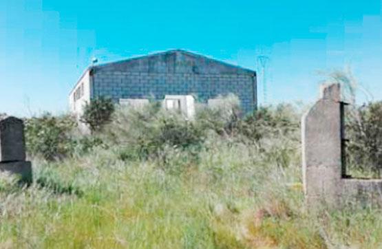 Suelo en venta en Cañaveral, Cañaveral, Cáceres, Carretera Cañaveral, 64.000 €, 149 m2