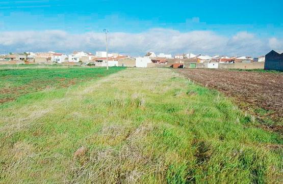 Suelo en venta en Don Benito, Badajoz, Calle Sector, 38.800 €, 1328 m2