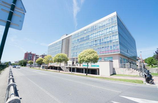 Local en venta en Derio, Vizcaya, Avenida Txorierri, 441.100 €, 493 m2