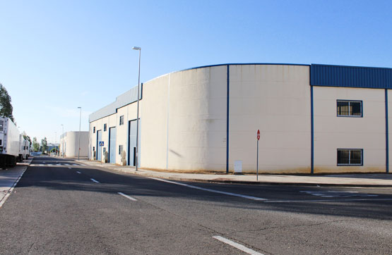 Industrial en venta en Aznalcóllar, Sevilla, Calle Pirita Esq C/ Minas Prim, 155.600 €, 507 m2