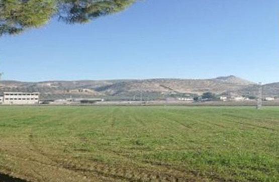 Suelo en venta en Pinos Puente, Granada, Calle Pago Berenguel, 48.300 €, 7630 m2