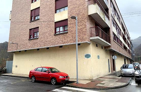 Local en venta en Los Barreros/barredos, Laviana, Asturias, Calle Puerto Pajares, 75.900 €, 285 m2