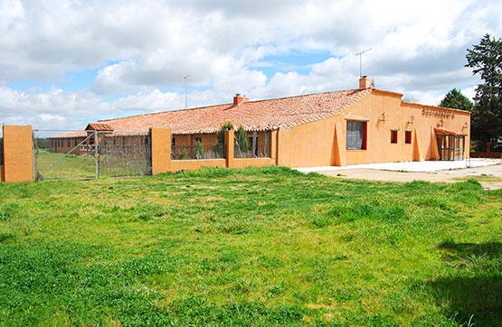 Piso en venta en Santa Eufemia del Arroyo, Santa Eufemia del Arroyo, Valladolid, Calle Caserio Santa Barbara, 145.760 €, 1121 m2