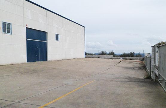 Industrial en venta en La Carolina, Jaén, Camino los Cortijos Altos de Toledo, 615.300 €, 3962 m2
