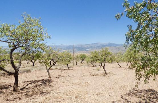 Suelo en venta en Oliveros, Lucainena de la Torres, Almería, Paraje Collado de Almería, 7.300 €, 9500 m2
