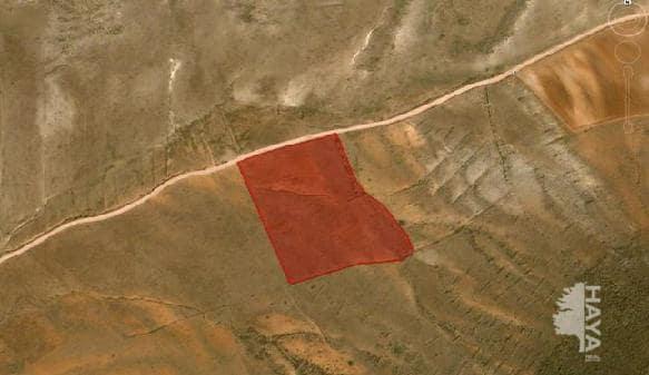 Suelo en venta en Suelo en Níjar, Almería, 8.700 €, 23600 m2