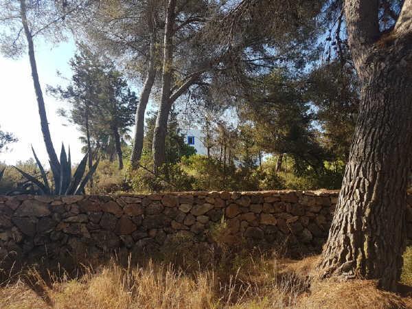 Casa en venta en Can Nadal, Santa Eulalia del Río, Baleares, Calle Pre. Can Pep Des Coix, 1.190.000 €, 4 habitaciones, 2 baños, 478 m2