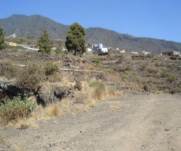 Suelo en venta en Punta Larga, Candelaria, Santa Cruz de Tenerife, Calle El Moralito, 205.000 €, 2622 m2