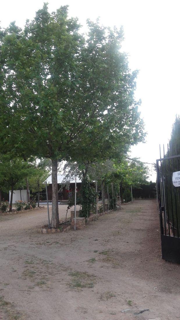 Suelo en venta en Suelo en Tomelloso, Ciudad Real, 60.000 €, 3000 m2
