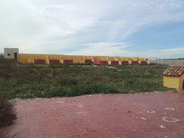 Suelo en venta en Chiclana de la Frontera, Cádiz, Calle la Cañadillas, 15.000 €, 3353 m2