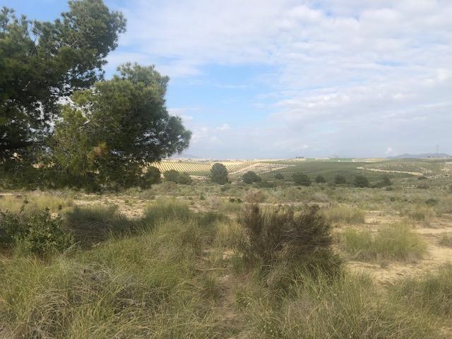 Suelo en venta en Vera, Almería, Lugar Vera Golf, 50.000 €, 5000 m2