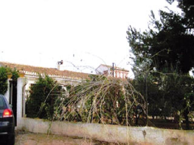 Casa en venta en Hortichuela, Torre-pacheco, Murcia, Paraje los Meroños, 63.300 €, 3 habitaciones, 1 baño, 218 m2