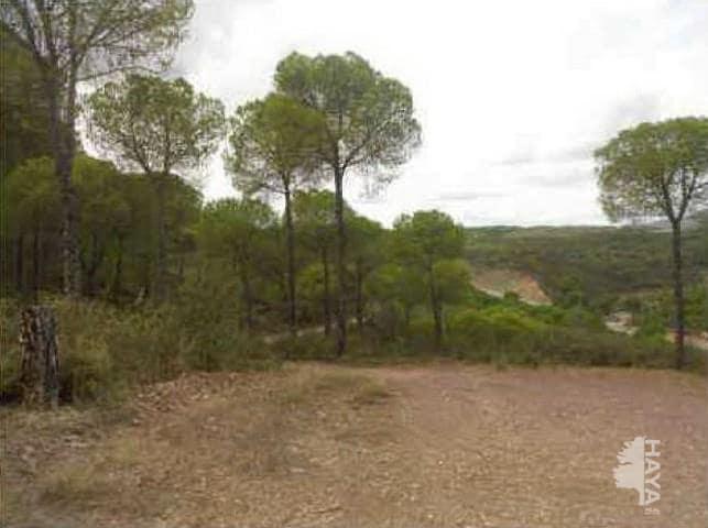 Suelo en venta en Barriada Sanantonio, Nerva, Huelva, Pasaje Umbria Javata, 23.290 €, 102700 m2
