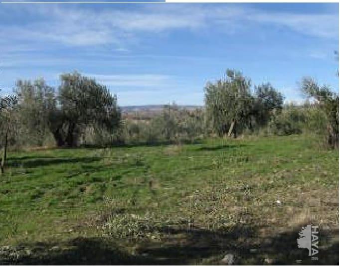 Suelo en venta en Marchal, Marchal, Granada, Lugar Paraje Ciguirre, 40.090 €, 11400 m2
