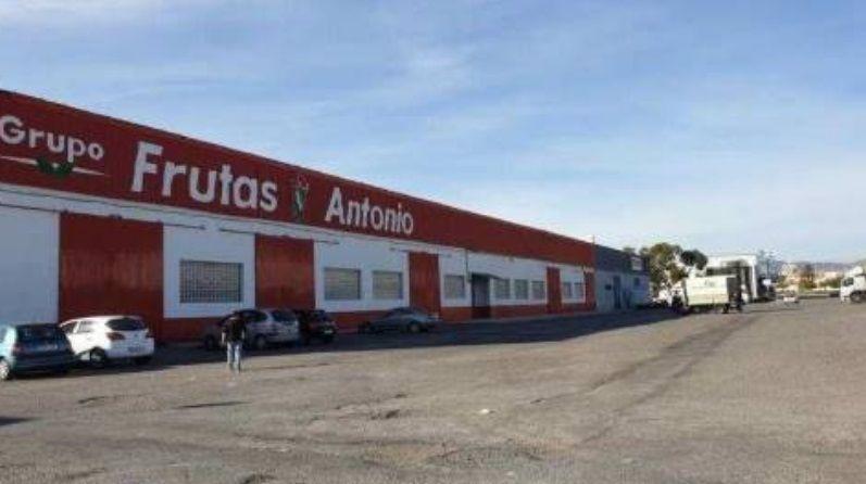 Industrial en venta en Santa María del Águila, El Ejido, Almería, Calle Camino Puesto Rubio, 736.000 €, 3 m2