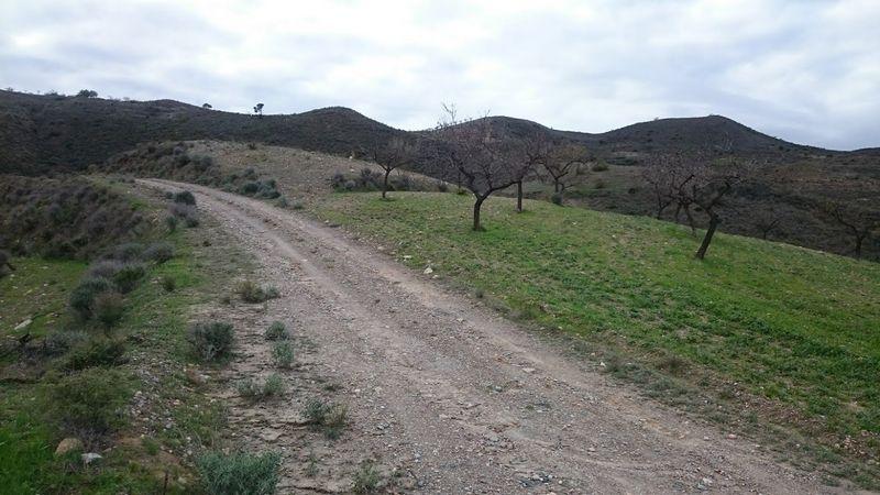 Suelo en venta en Cantoria, Almería, Pasaje Arroyo del Aceituno, 8.000 €, 6820 m2