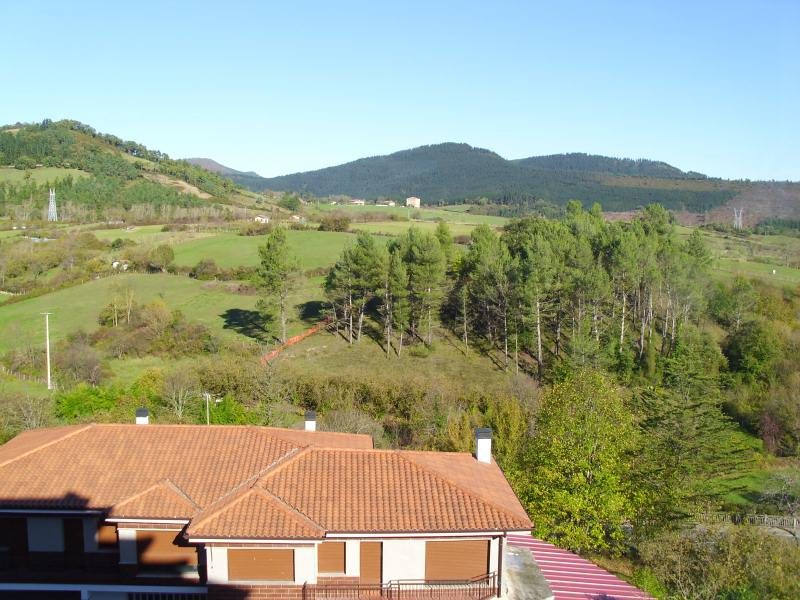 Piso en venta en Artziniega, Álava, Calle del Medio, 110.000 €, 2 habitaciones, 1 baño, 92 m2
