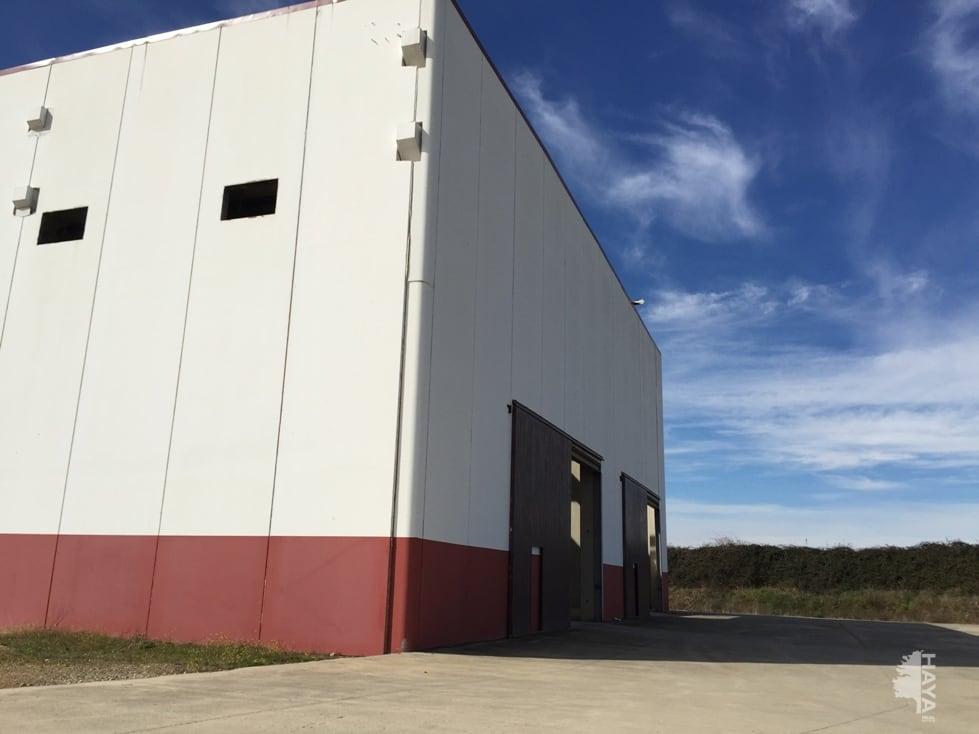Industrial en venta en Galisteo, Cáceres, Carretera Alagon-montehermoso, 1.470.100 €, 6516 m2